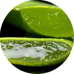 Aloe Vera II illatolaj 100 ml