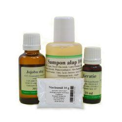 Sampon készítő csomag (zsíros hajra)